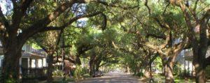 Neighborhood -
